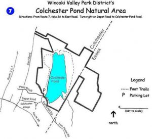 Colchester Pond Trail Map (Temporary)
