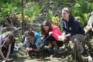 Marina pond ecology 1